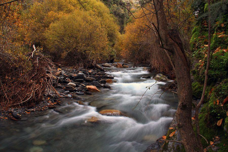 The Autumn River van Cornelis (Cees) Cornelissen