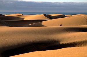 Wandeling in de woestijn