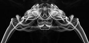 Rook gezicht / Fantasy figure in smoke