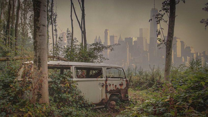 Car in the jungle van Anya Lobers