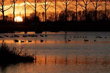Sonnenuntergang mit Reflektionen von Anne Ponsen