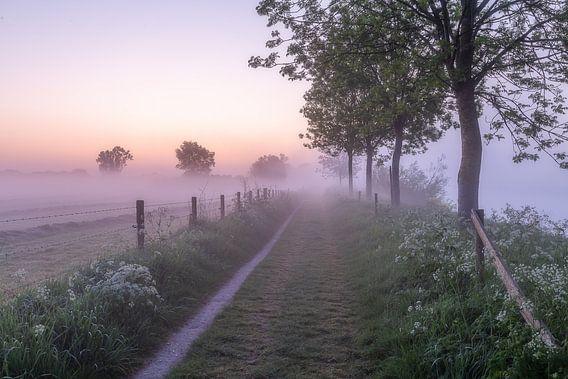 Dauwtripje tijdens een mistige ochtend langs de Leie in Wevelgem