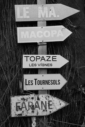 Zonnebloemen in Saint-Tropez