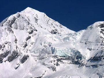 Besneeuwde berg(top) van M de Vos
