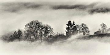 Nebel @ Gulperberg von Rob Boon