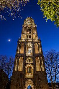 Utrecht 13 (#2) Domtoren van