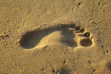 Voetafdruk in het zand van Luut Veenje