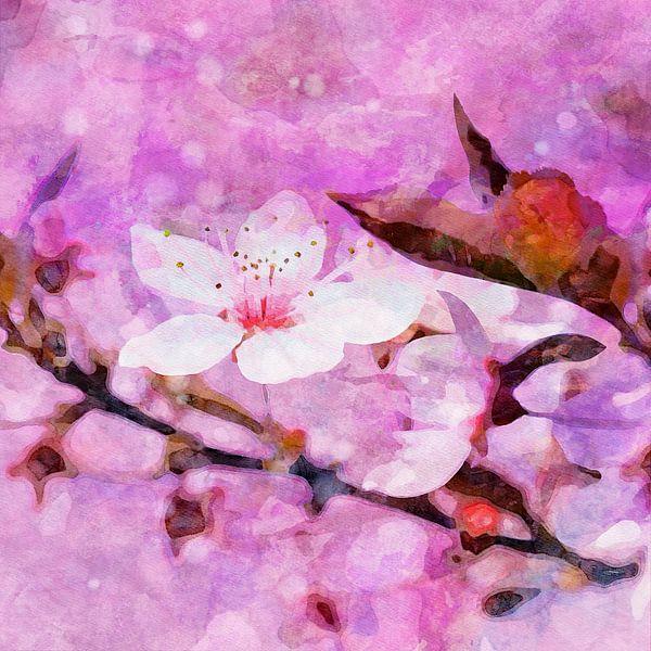 Cherry Blossom II von Andreas Wemmje