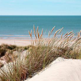 De strand achter de duinen van YesItsRobin