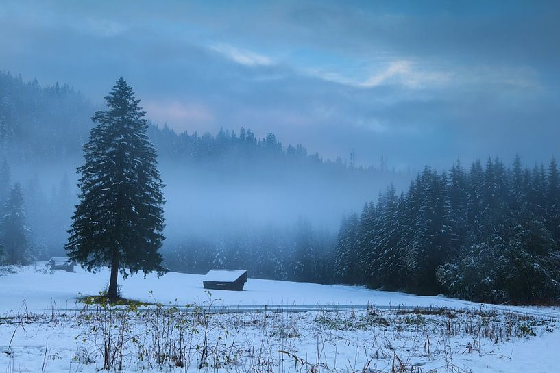 Cozy hut and cold winter van Olha Rohulya