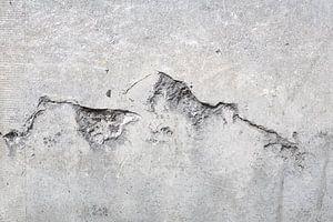 Scheur in de muur van Tessa Wassenberg
