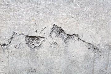 Scheur in de muur von Tessa Wassenberg