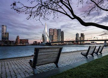 Skyline van Rotterdam van Jeroen Mikkers