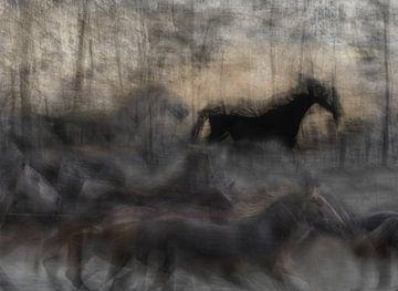 Pferdehaufen, milan malovrh von 1x