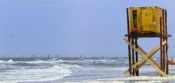 Texel - Ronde omTexel van foto zandwerk