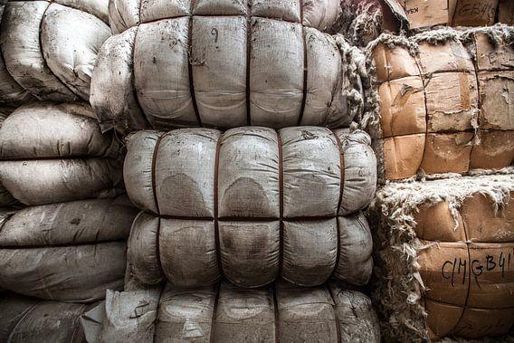 The woolfactory van Olivier Van Cauwelaert