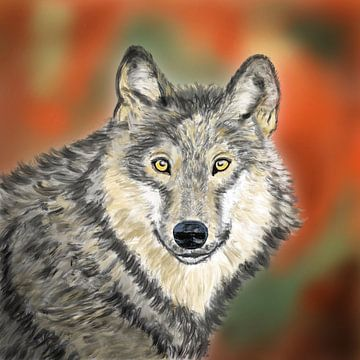 Broer Wolf  van Hans van Gurp