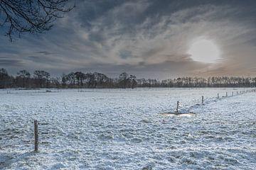 Zonsopkomst in de winter von Inge Heeringa
