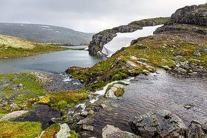 Flotvatnet meer langs de Sneeuwweg in Noorwegen