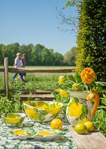 Piccobella servies met citroenen