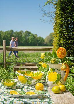 Vaisselle Piccobella aux citrons sur