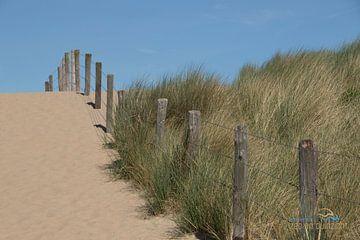 Strandopgang met duinen in Katwijk van Rianne Ouwerkerk