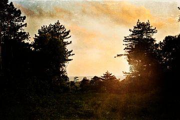 Daydreaming | Bergen aan Zee van Marijke Trienekens