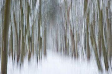 Arbres dans la neige sur Barbara Brolsma