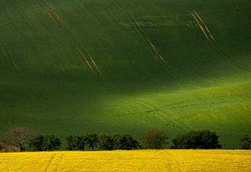 Toscaans Moravië, Tsjechië van Adelheid Smitt