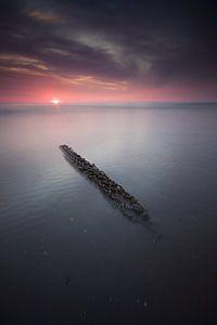 Aangespoeld visnet Zandvoort van