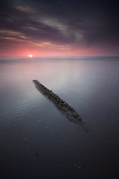 Aangespoeld visnet Zandvoort van Gerhard Niezen Photography