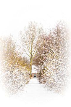 Winterlandschap van Ton van Oudheusden