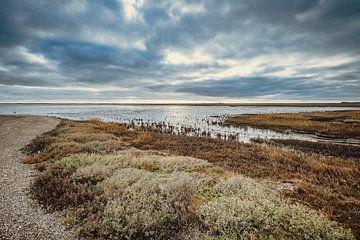 Wattenmeer - 6 von Rob van der Pijll