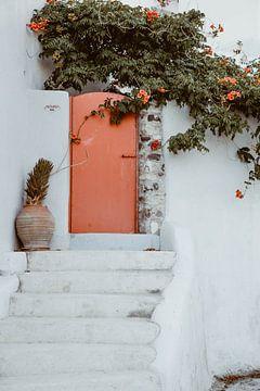 Kleurijke voordeur | Colorful  front door van shanine Roosingh