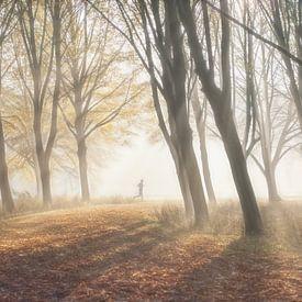 Hardloper in bos van Marcel van Balken