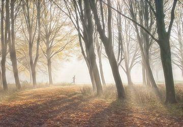 Runner dans la forêt  sur Marcel van Balken