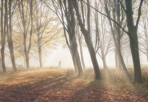 Hardloper in bos van