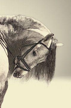 Malerische künstlerische Arbeit eines Kopfes eines Pferdes von Cor Heijnen