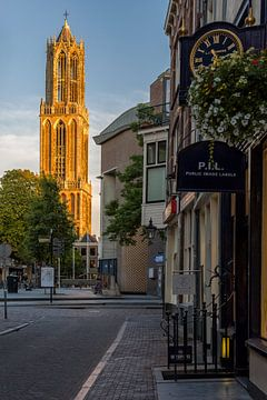 De Gele Domtoren van Utrecht van