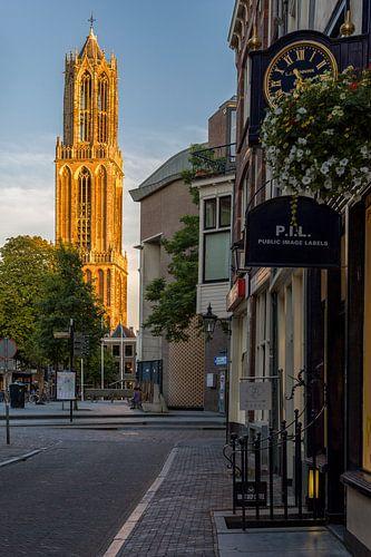 De Gele Domtoren van Utrecht van Thomas van Galen