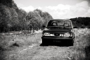 Saab 99, oud beestje tussen het fluitenkruid
