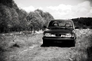 Saab 99, oud beestje tussen het fluitenkruid van Rutger Hoekstra