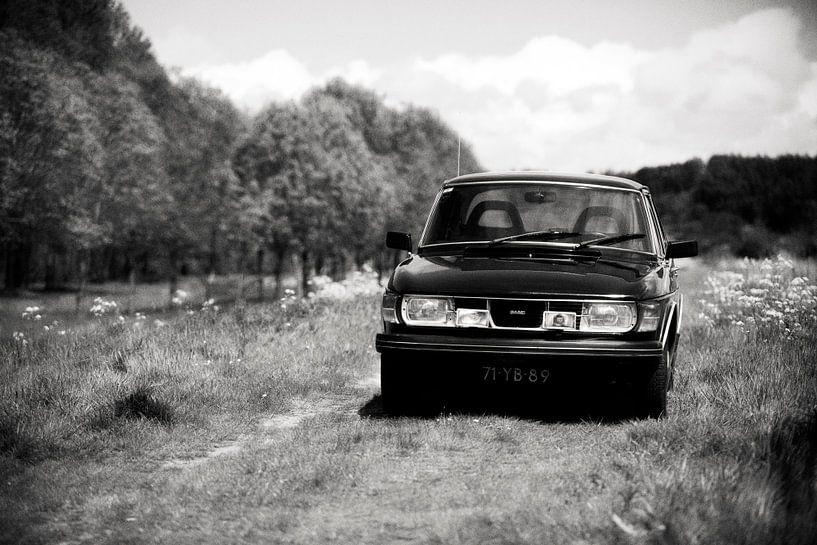 Saab 99, oud beestje tussen het fluitenkruid von Rutger Hoekstra