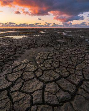 Droogte aan het wad (modderscheuren)
