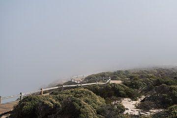 Nebel-Landschaft von Chantal van der Hoeven