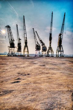 Hafenkräne im Hafen von Antwerpen von Paul Marnef