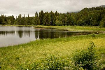 erstaunliche Natur von Karijn | Fine art Natuur en Reis Fotografie