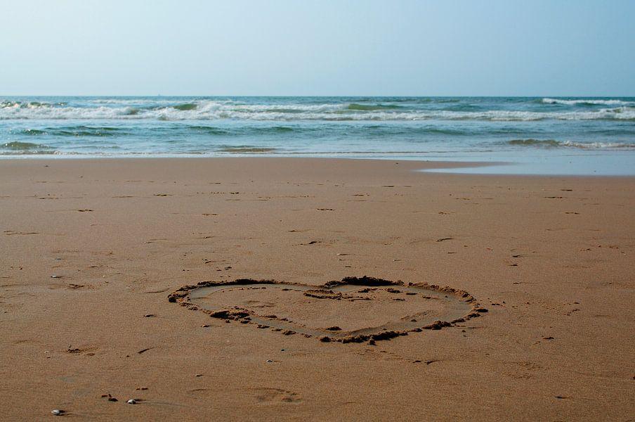 Beach love / Love beach