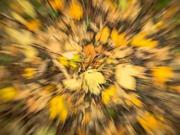 Herausgezoomte Blätter