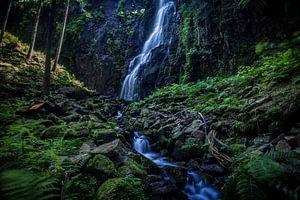 Schwarzwald, Wasserfall, Natur von Kahl Design Manufaktur